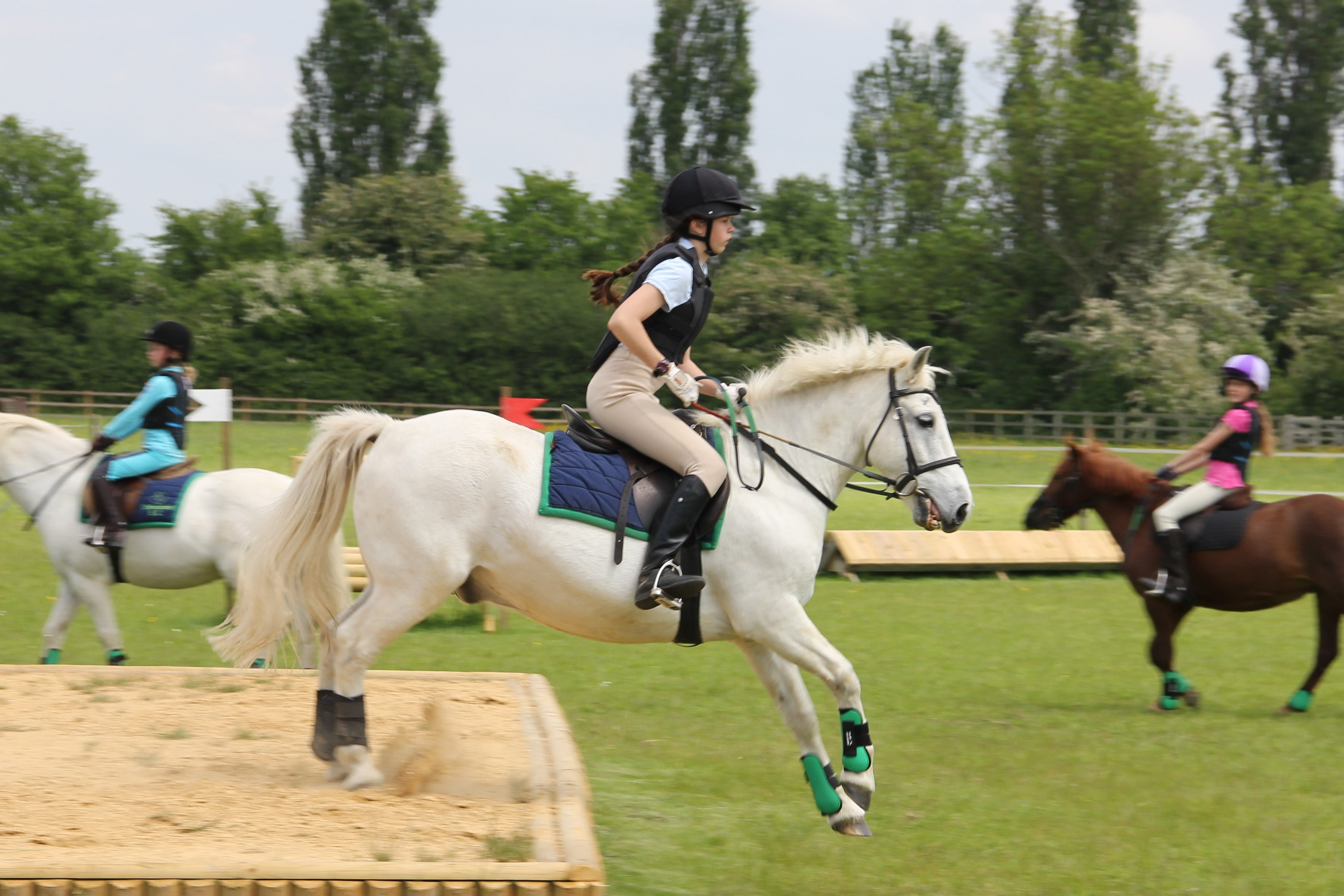 Horse Riding Lessons In Billericay Chelmsford Equestrian